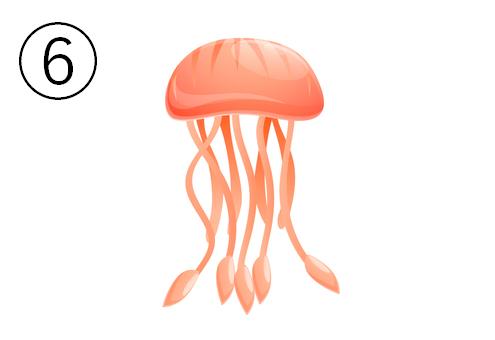 オレンジの、楕円形のクラゲ