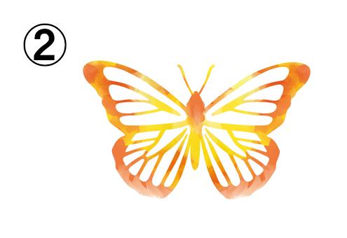 オレンジ、黄色の線の蝶