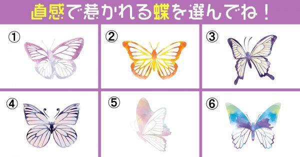 【心理テスト】6種の蝶で深層心理を解明!あなたが惹かれるのは「過去?未来?」