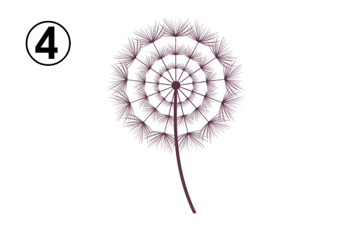 ふわっとした花のような綿毛