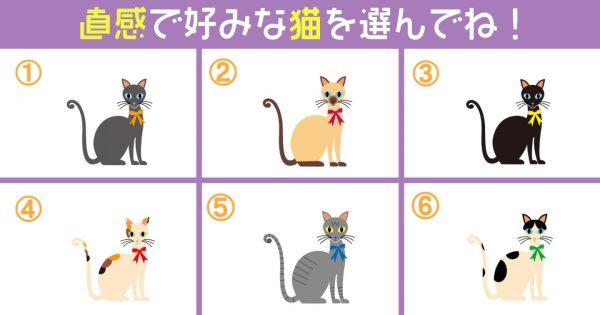 【心理テスト】6匹の猫は、あなたの「諦めの早さ」を見抜いています