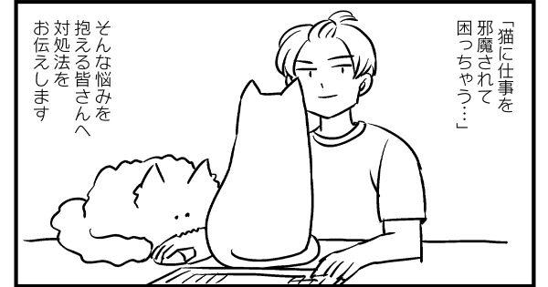 仕事中の「猫の遊んでアピール」どう断る?ある飼い主の出した答えが「真理」だった