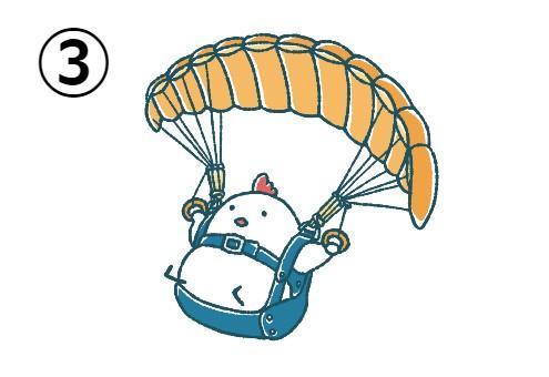 パラグライダーで遊ぶにわとり