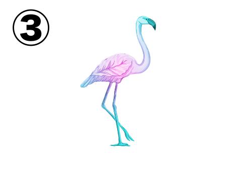 片足を上げたフラミンゴ