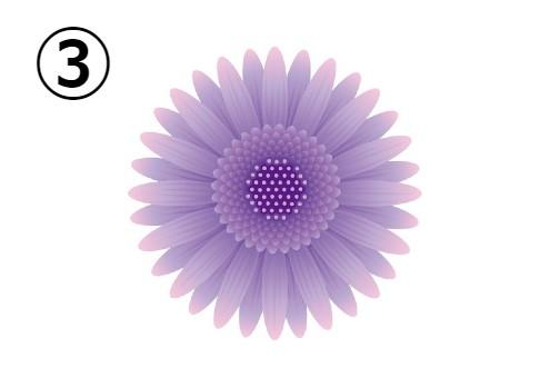 ピンク、紫のグラデーションのガーベラ