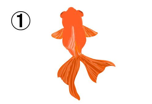 ゆらゆら泳ぐ、オレンジの出目金