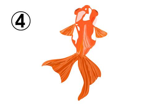ゆらゆら泳ぐ、白とオレンジの斑の出目金