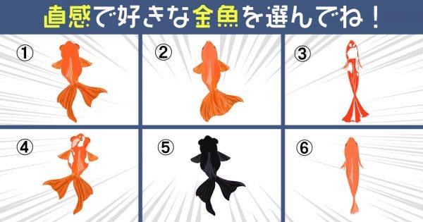 【心理テスト】掬いたい金魚を選んで、あなたの「アーティスト適性」を診断♪