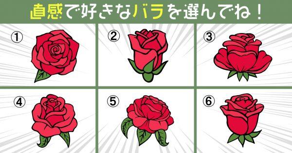 【心理テスト】バラを選んで性格診断!あなたの「怖いもの知らず度」の高さは?