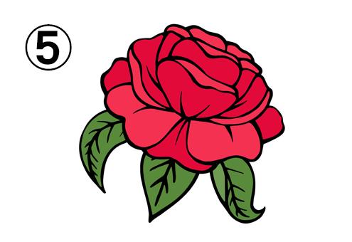 葉も花も開ききったバラ