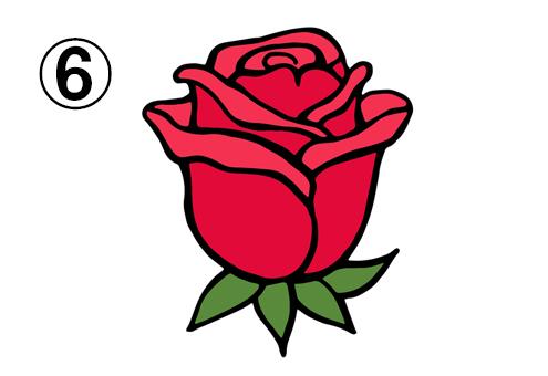 開きの浅い、真上を向いたバラ