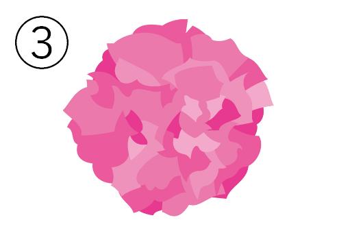 濃いピンクのカーネーション