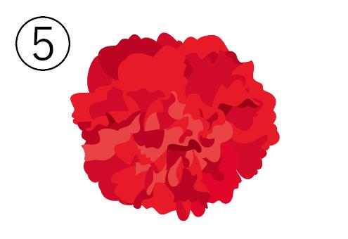 赤のカーネーション