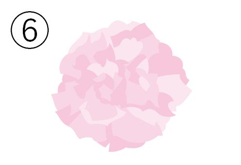薄ピンクのカーネーション