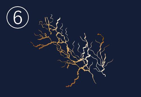 毛細血管のような細かい密度の高い金継ぎ