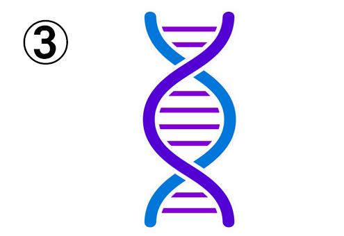 紫と青の、幾何学的なDNA