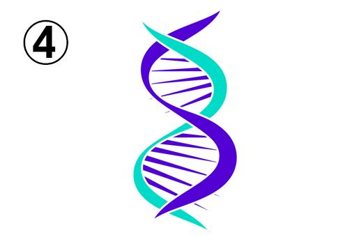 紫とターコイズの、曲線メインのDNA