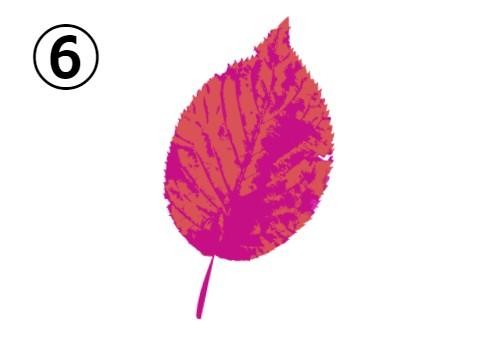 コーラルとショッキングピンクの葉っぱ