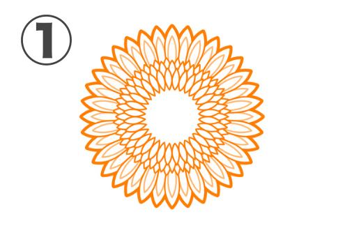 線ありの細かい花びら、中心部が白いひまわり