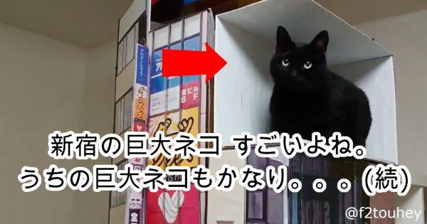 「新宿東口の巨大猫」が早くも実写化!?元ネタそっくりな再現動画が370万再生を突破