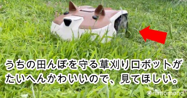 【しば犬だけに…】超キュートな「芝刈りロボ」にTwitter民がメロメロ♡