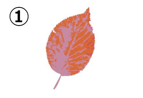 オレンジと薄紫の葉っぱ