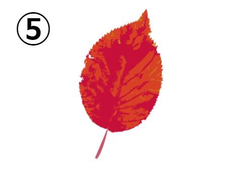 赤とオレンジの葉っぱ