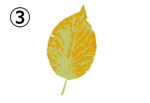 黄色と黄緑の葉っぱ