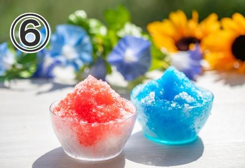 背景に朝顔とひまわり、手前に2色のかき氷が並んだ写真