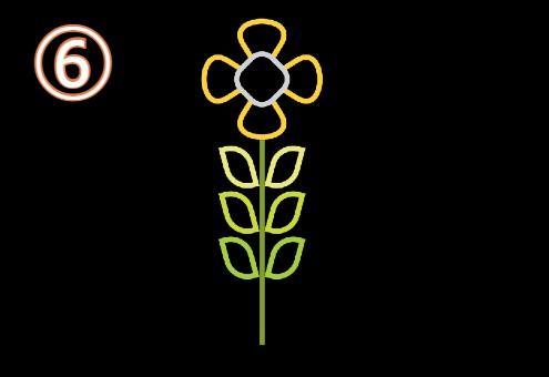 黄色花びら、白いがく、黄緑葉っぱの花