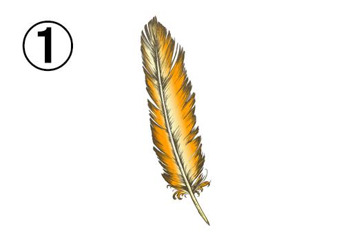 細いオレンジの羽
