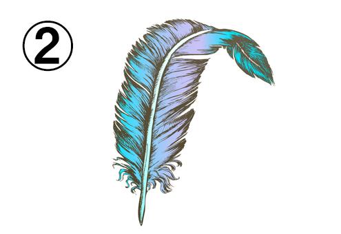 ターコイズと紫のグラデーションの羽
