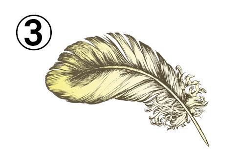 黄色の大きな羽