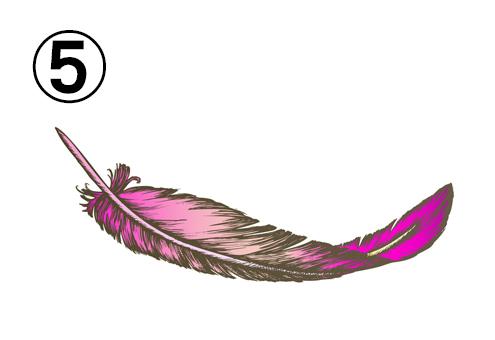 ピンクの細長い羽