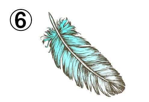 ターコイズと白のグラデーションの大きな羽