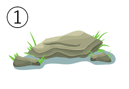 平たい、淡い抹茶色の岩