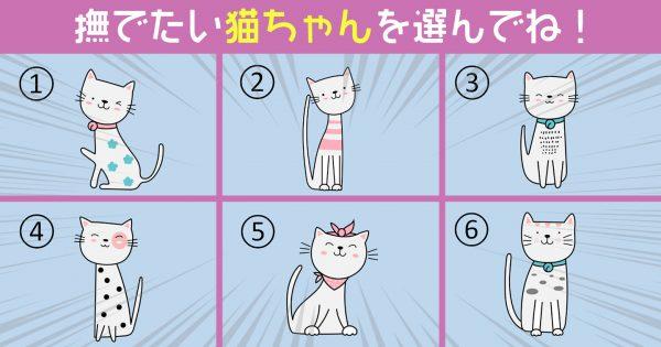 【心理テスト】撫でたい猫で診断!あなたの「求めている味」はコレですね?