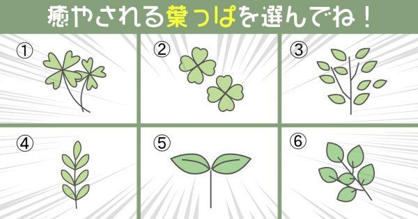 【心理テスト】あなたの「リスク管理の上手さ」を測定!惹かれる葉っぱを選んでね!