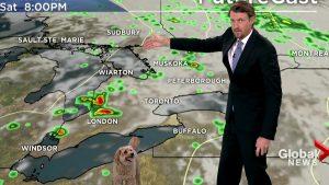 【放送事故】「ワンコが乱入した天気予報」が毎週やってほしいレベルなんだが