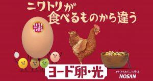 皆さんは「卵」ちゃんと選んでいますか?