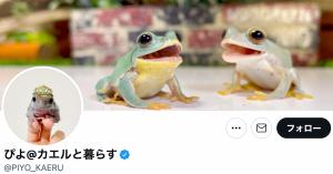 登録者11万人「ぴよのカエルチャンネル」が魅力的な理由!おすすめ動画3選も